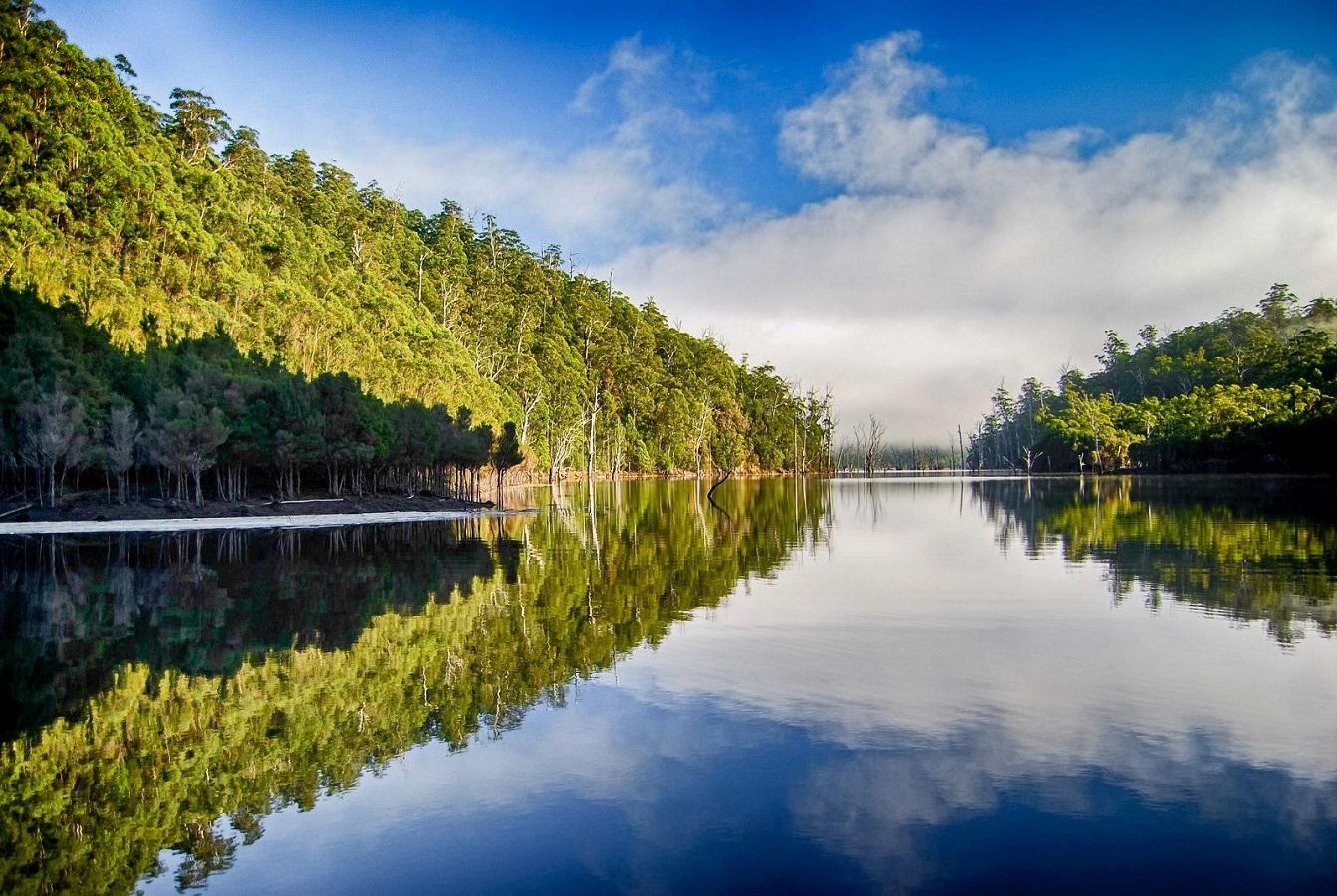 Lake Mackintosh
